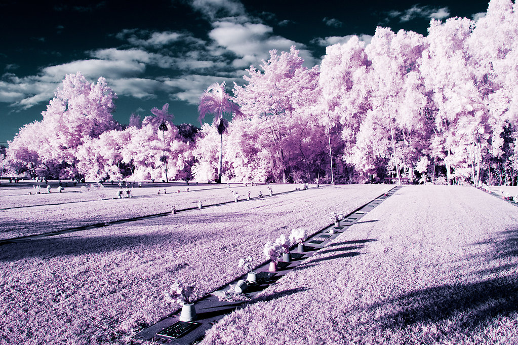 Digital Infrared (IR) photography